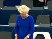 自称「イスラム国」のみならず、あらゆるイスラム主義・義勇兵と闘うべし-仏極右「国民戦線」が欧州議会で演説